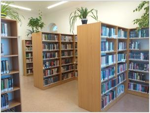 Naše knihovna
